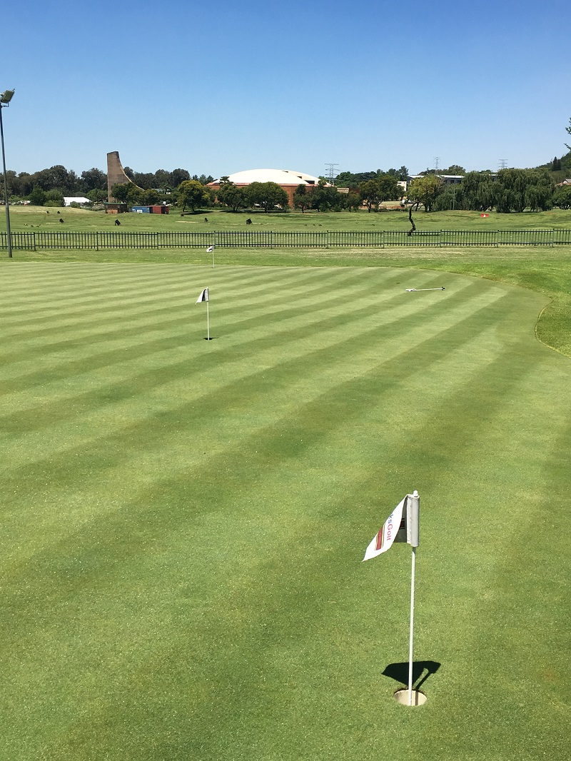Putting green at Tuks golf academy